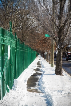 BROOKLYN - January 8, 2017: By the end of week, my usual walking route was covered in snow and a kind soul had already shoveled a path.