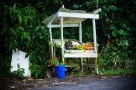 MAUI - roadside fruitstand in Lower Nahiku Village along the Hana Highway