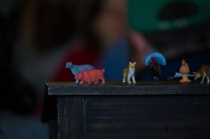 The collection of tiny animals makes a visit to The Farm on Adderly even more unique.