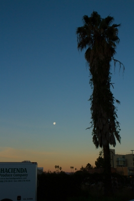 Moon setting and sun rising over San Jose's Japan Town.
