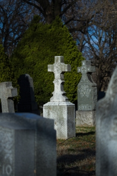 Headstones in Holy Cross Cemetery in East Flatbush.